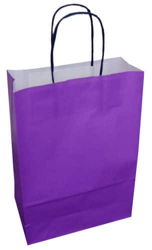 120b73467 20 Twist Twisted Handle Paper Carrier Party Gift Bags With Tissue ...